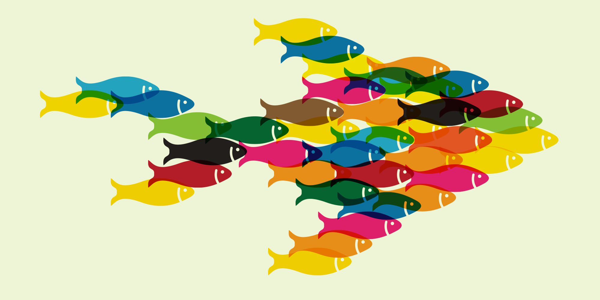 Illustration of a shoal of multi coloured fish